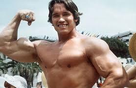 Arnold: ator, político e exterminador californiano
